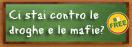 banner CI STAI CONTRO LE DROGHE E LE MAFIE?