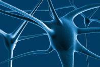 II Congresso Internazionale Neuroscienze e Dipendenze. Neurobiologia, neuroimaging e aspetti educativi nelle dipendenze